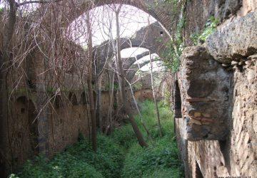 Etna, un patrimonio da tutelare