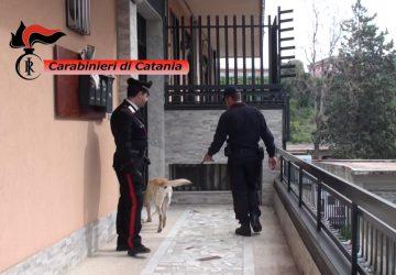 Mascalucia, detenevano cocaina in un'abitazione  VIDEO