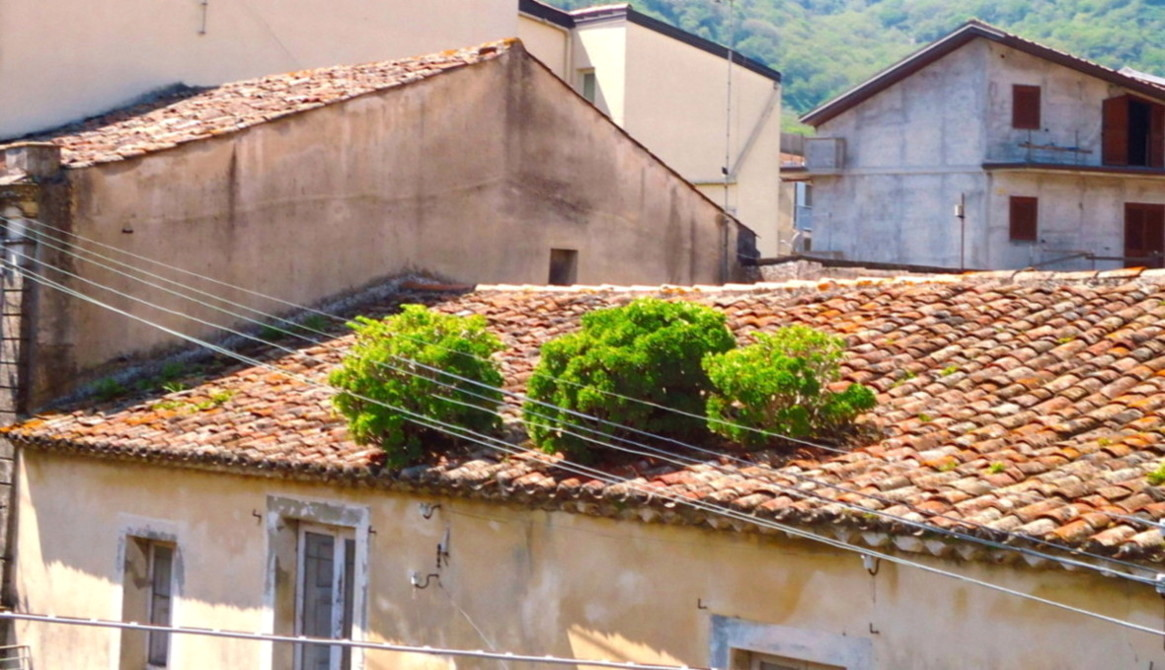 Francavilla, dove la Natura impera sovrana…