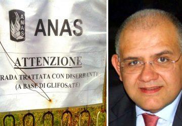 """S.S. 185 """"avvelenata"""": la risposta dell'Anas"""
