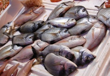 Guardia Costiera, sequestrato pesce non idoneo in un ristorante