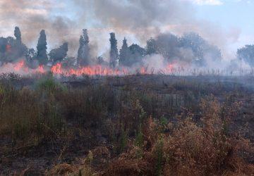 In fiamme la collina di Giarre VIDEO