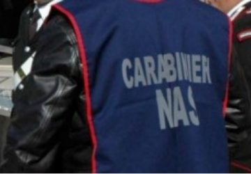 Lavoro nero e controlli di Nas e carabinieri a Giardini, Letojanni e Taormina: tre denunce e sospese due attività imprenditoriali