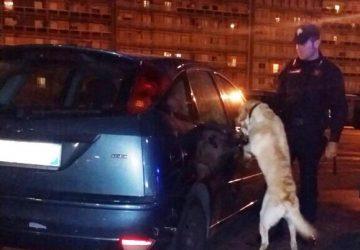 Catania, arrestato dai carabinieri rapinatore romeno