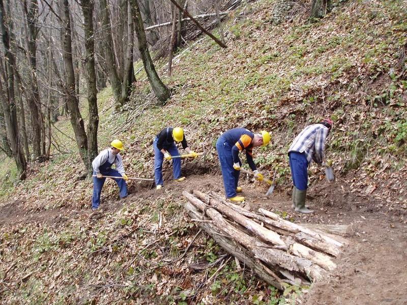 Lavoratori forestali: è caos assunzioni