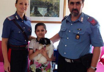 Catania, lucravano sui cuccioli di cane e tartarughe: 3 denunciati