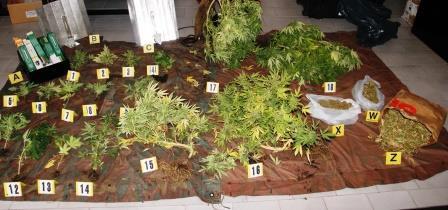 """Catania: insospettabile con un chilo di """"marijuana"""" di """"produzione propria"""" nell'armadio"""