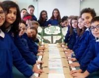 """Giarre, l'albero di 30 piani disegnato dagli studenti giarresi vince il concorso nazionale """"Immagini per la Terra"""""""