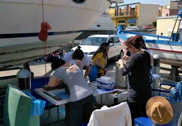 """Riposto: inaugurata questa mattina al porto turistico la IX^ rassegna artistica """"I colori del mare"""""""