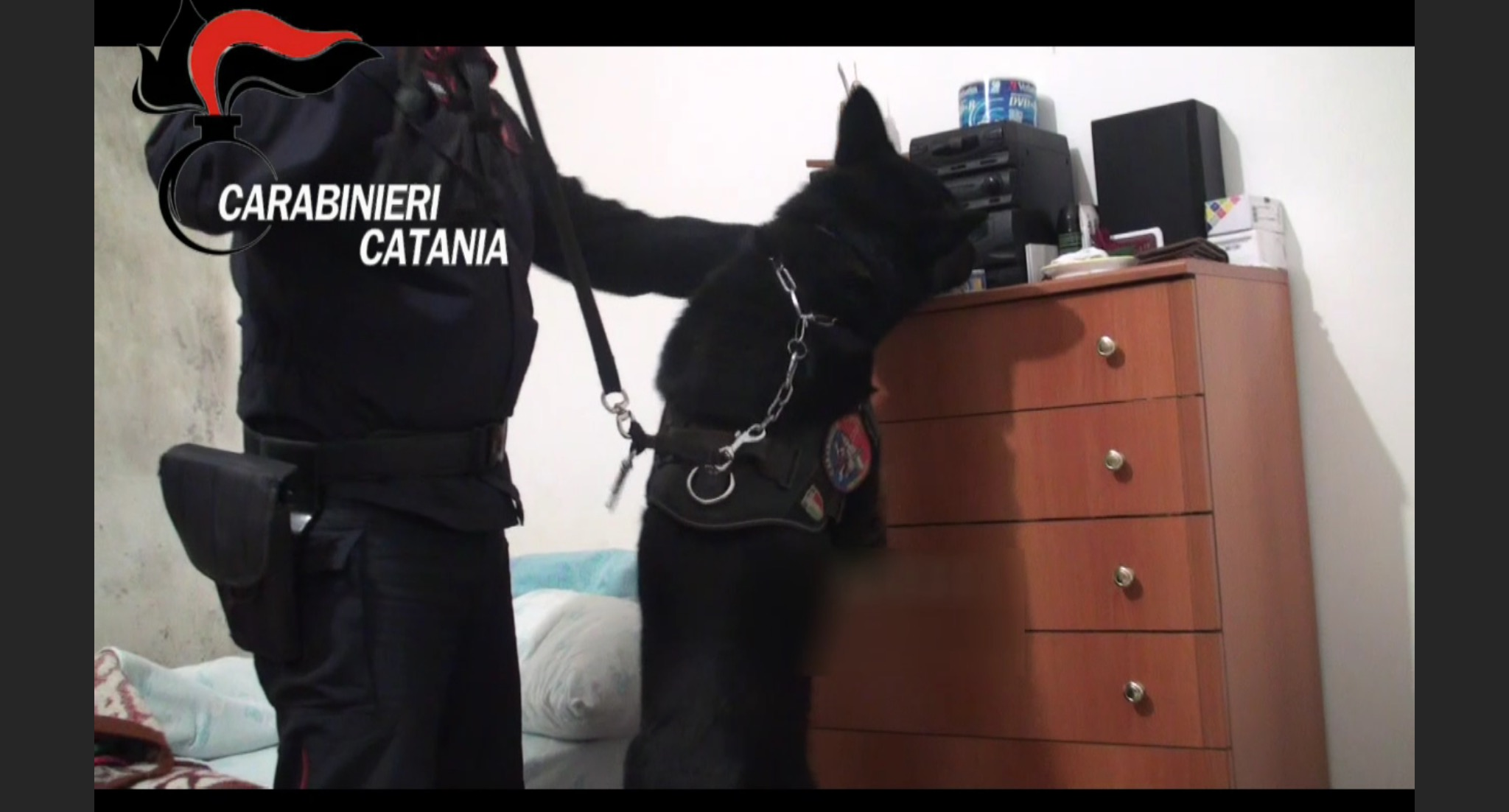 Droga, Acireale: 11 arresti per spaccio di marijuana