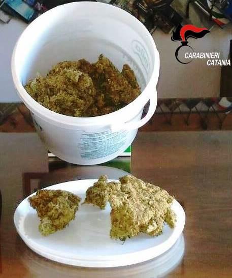Nicolosi: arrestato impiegato insospettabile sorpreso con mezzo chilo di marijuana