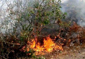 Fiumefreddo, a fuoco sterpaglie in un terreno di via Papa Giovanni Paolo II: intervento dei Vigili del fuoco