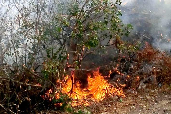 Incendio sterpaglie a Pasteria e Acireale zona Tupparello