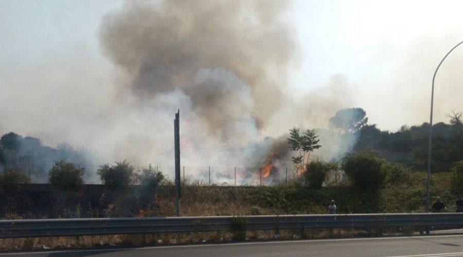 Allarme incendi, intervento della Forestale a Marina di Cottone e S.Antonino LA DIRETTA
