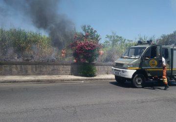 Giarre: incendio doloso lungo il viale don Minzoni