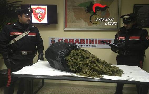 Giarre, nuovo colpo dei carabinieri: sequestrati 5 chili di marijuana