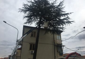 Giarre, interventi di messa in sicurezza dei pini al quartiere Satellite VIDEO