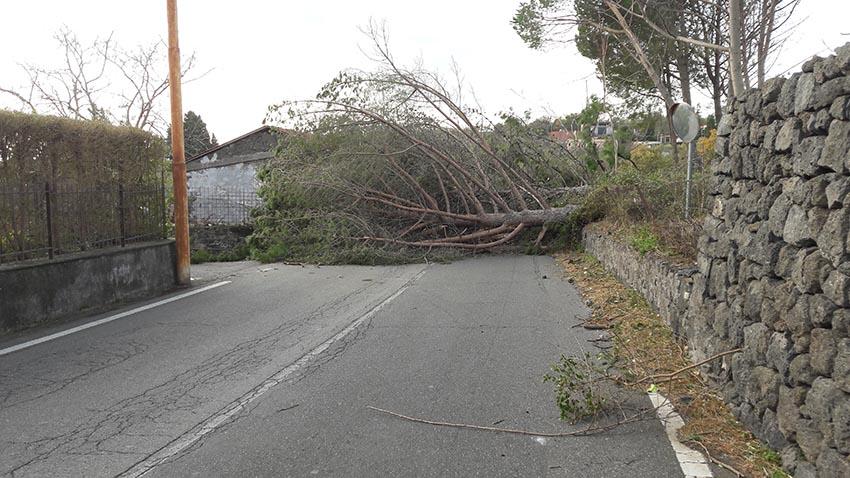 Danni per il forte vento: Santa Venerina chiede il riconoscimento dello stato di calamità