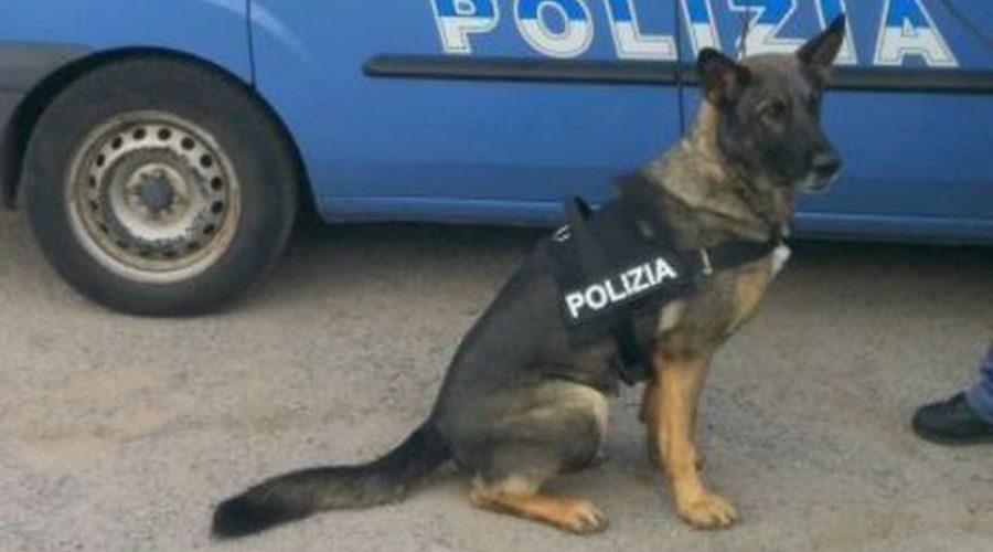 Catania, fermato dalla polizia il latitante Vito Cunsolo