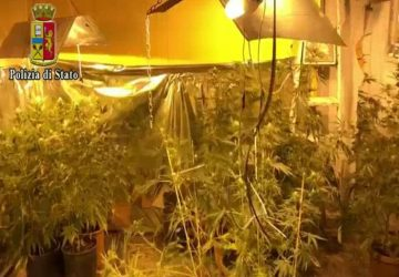 "Catania, droga e serra ""fai da te"" con cannabis. In manette 24enne VIDEO"