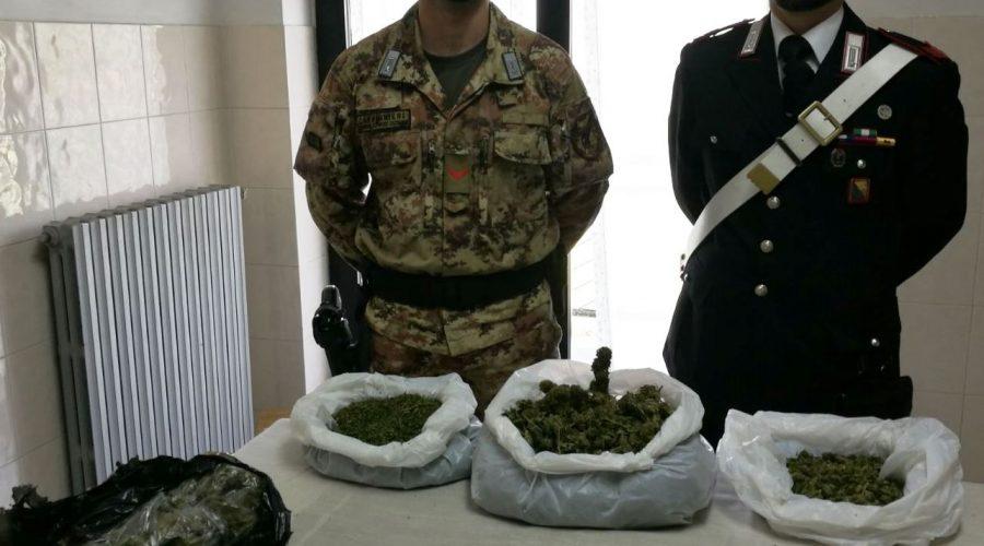 Maniace, beccato in casa con 1,6 kg di marijuana. Arrestato