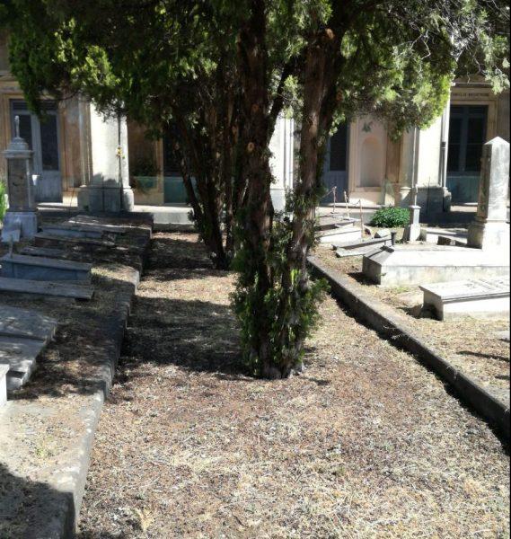 Cimitero di Trepunti, ultimati interventi di riqualificazione del verde. In itinere procedimento per riaprire l'area monumentale