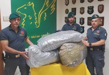 Colpo della Guardia di Finanza: sequestrati 50 chili di marijuana al casello di San Gregorio