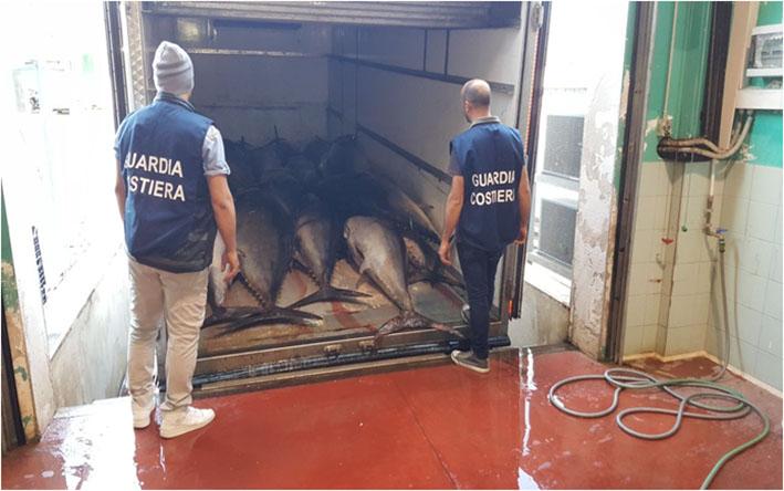 Riposto, sequestrate 4 tonnellate di tonno rosso privo di tracciabilità
