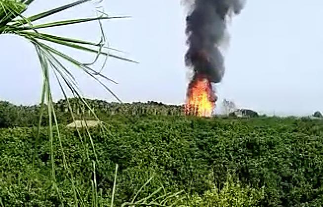 Vivaio Forestale Sicilia : Fiumefreddo incendio in un vivaio in contrada lella. intervento dei