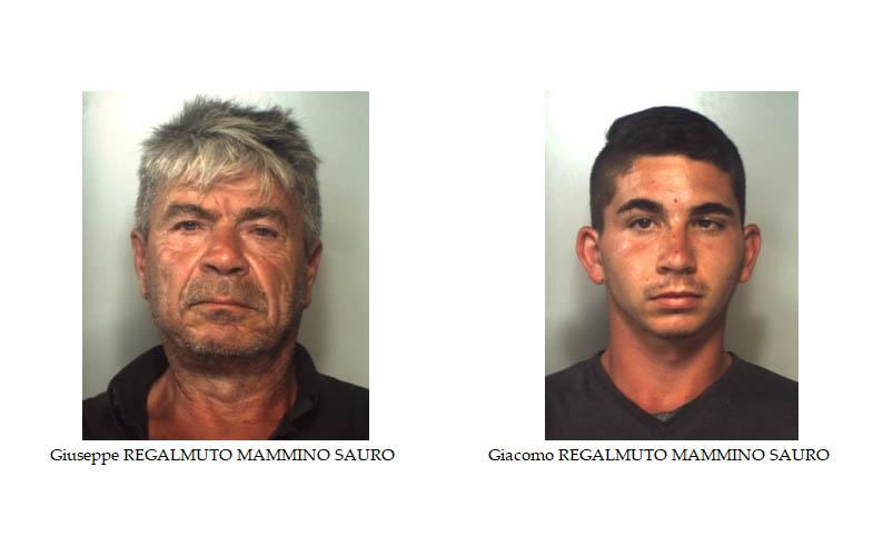 """""""Gestivano"""" coltivazione di canapa indiana: sequestrate: 2.500 piante e 50 Kg. di marijuana. In manette padre e figlio VIDEO"""