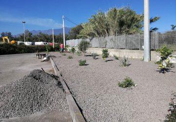 Giarre, azienda adotta area a verde e gli alberi piantati vengono rubati