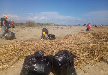Giornata di Pulizia organizzata da Legambiente Catania: 300 chilogrammi di rifiuti raccolti alla foce del fiume Simeto
