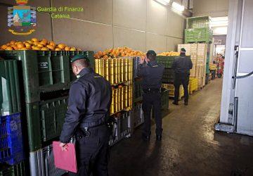 Controlli interforze al Maas di Catania: pioggia di sanzioni
