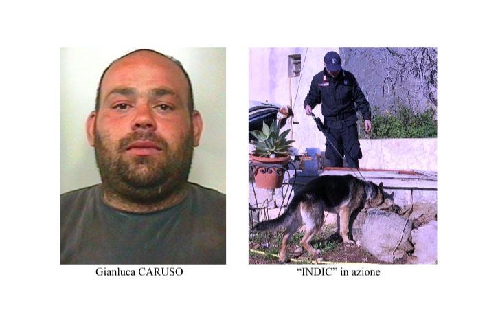 """Aci Sant'Antonio, nascondevano in casa il """"fumo"""" già pronto ad essere piazzato: conviventi in manette"""