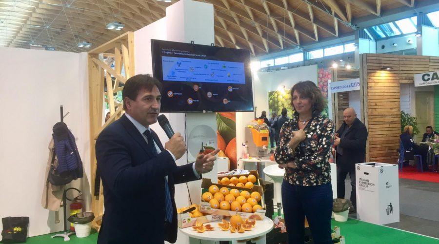Agrumi e hi tech, una app da smartphone per riconoscere le autentiche Arance rosse di Sicilia IGP