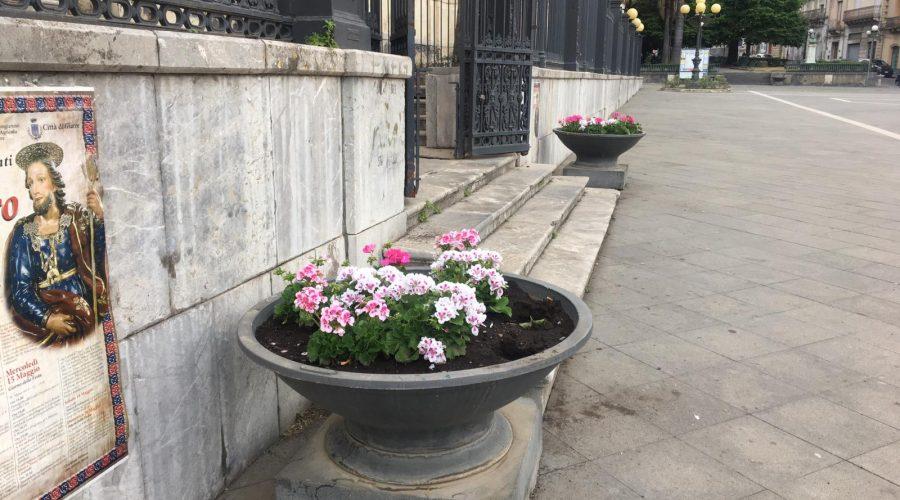 """Piazza Duomo """"illuminata"""" con i fiori donati da una commerciante"""