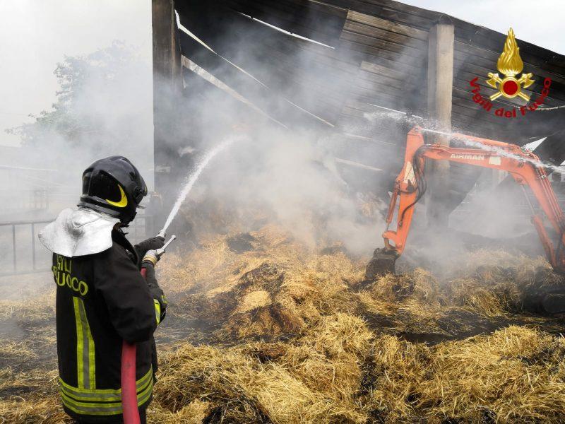 Aci Catena, salvati da un incendio decine di bovini