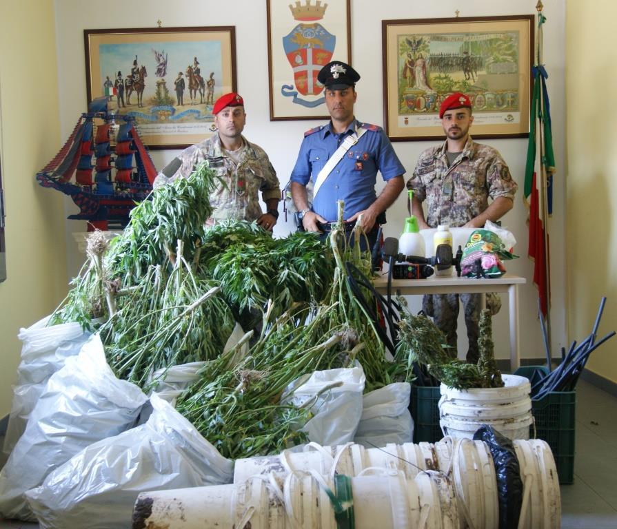"""Bronte, irrigavano la piantagione di canapa indiana con l'acqua pubblica: arrestati 3 """"coltivatori"""""""