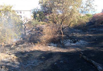 Catania, in fiamme il parco Gioieni.  Vigili del fuoco in azione