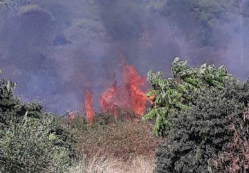 Acireale, vasto incendio nei pressi di Capomulini