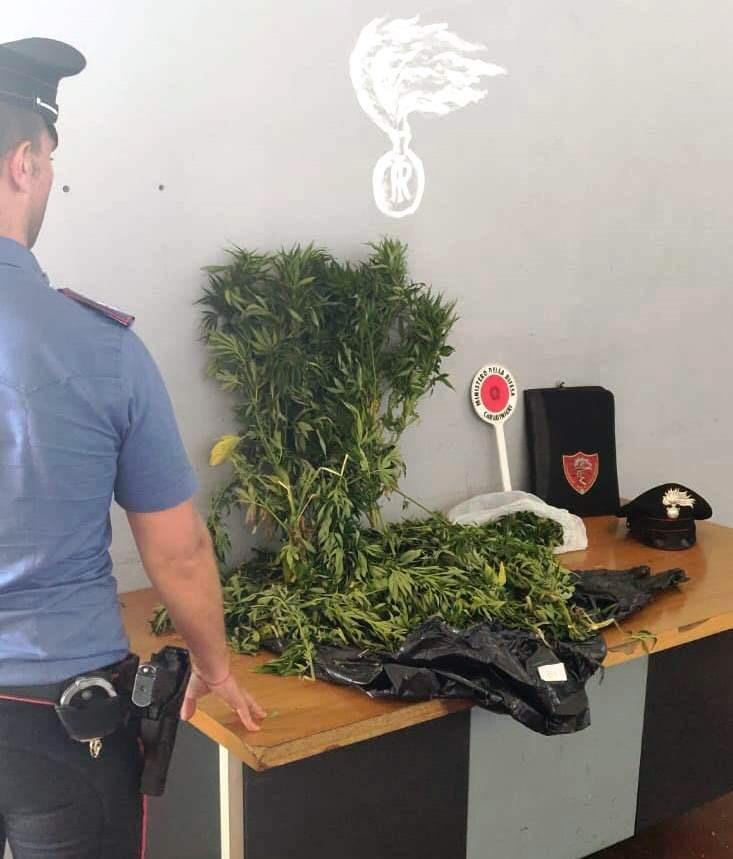 San Giovanni Galermo: beccati con tre kg di marijuana. Arrestati due belpassesi