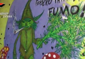 Catania, cancellato murales inneggiante al consumo di droghe VIDEO