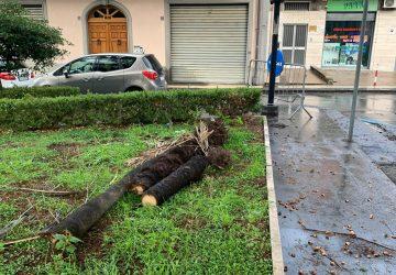 Emergenza maltempo: intervento dei Vvf a Giarre e Zafferana