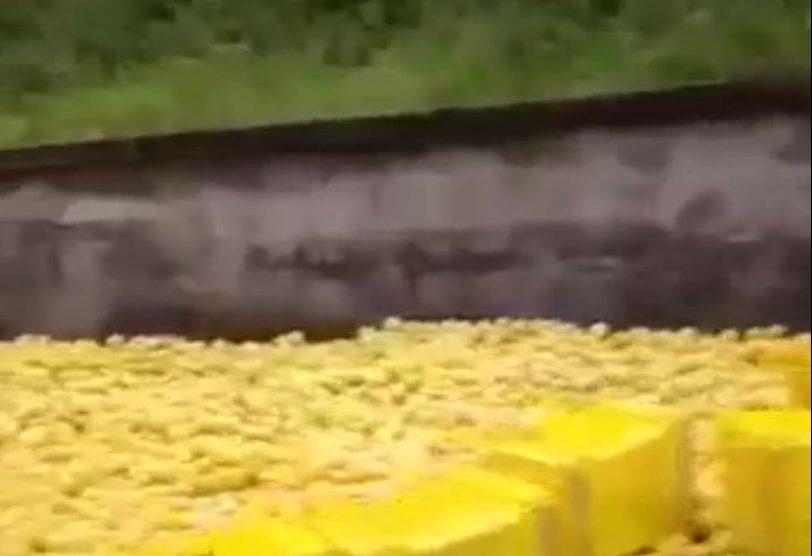 Camion perde il carico: rallentamenti allo svincolo autostradale di Giarre in direzione Catania