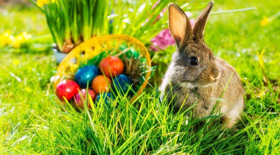E' Pasqua