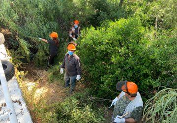 Mascali, al via gli interventi di bonifica boschetto fronte mare a Sant'Anna e Fondachello