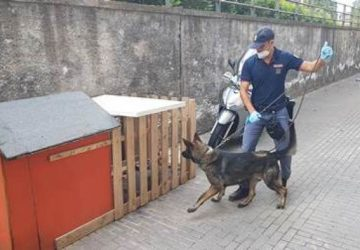 Cane a guardia di un tombino con droga a Catania, due arresti