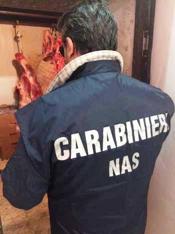 Catania, Sequestrata carne di cavallo macellata clandestinamente
