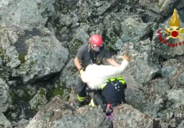 Bronte, Vigili del fuoco salvano caprette intrappolate in una grotta