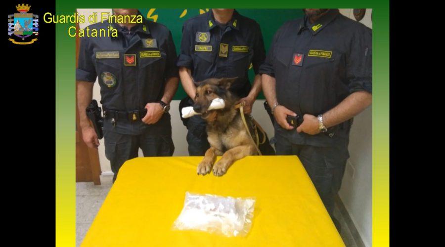 Scoperto appartamento dedicato allo spaccio di droga: sequestrata cocaina e denunciato 21enne